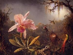 Martin Johnson Heade - Cattelya Orchid and Three Brazilian Hummingbirds