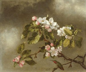 Martin Johnson Heade The Complete Works Approaching