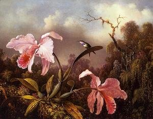 Martin Johnson Heade - Orchids and Hummingbird 2