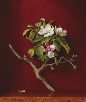Martin Johnson Heade - Apple Blossoms in a Corner
