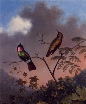Martin Johnson Heade - Brazilian Ruby Hummingbirds