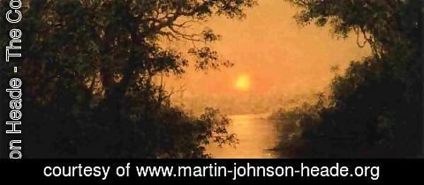 Martin Johnson Heade - Sunset (also known as Jungle Scene)