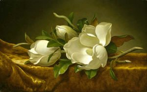 Magnolias on Gold Velvet Cloth 1888