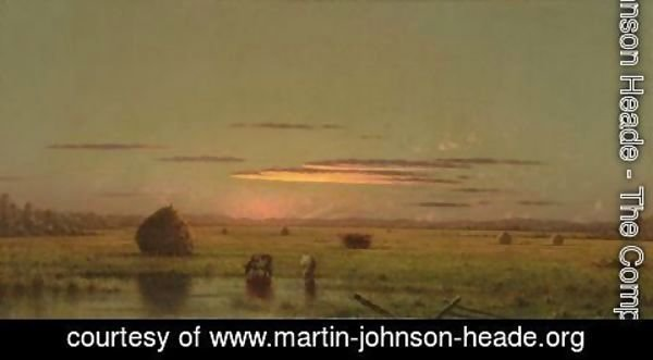 Martin Johnson Heade - Cattle In The Marsh, Near A Fence