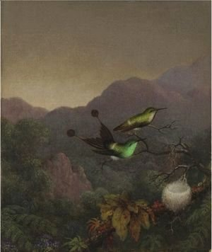 Martin Johnson Heade - Racket-Tail, Brazil