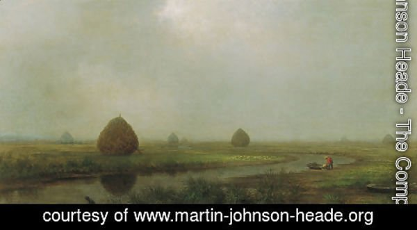 Martin Johnson Heade - Jersey Marshes 2
