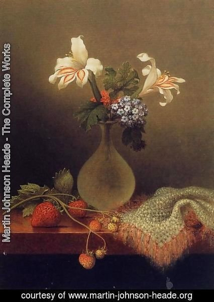 Martin Johnson Heade - A Vase Of Corn Lilies And Heliotrope