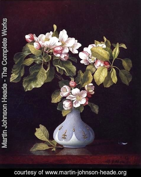 Martin Johnson Heade - Apple Blossoms In A Vase