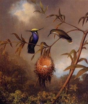 Martin Johnson Heade - Black Breasted Plovercrest