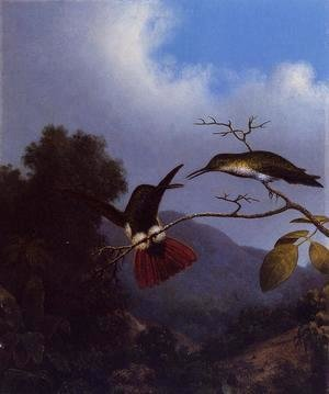 Martin Johnson Heade - Black Throated Mango