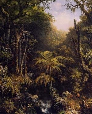 Martin Johnson Heade - Brazilian Forest