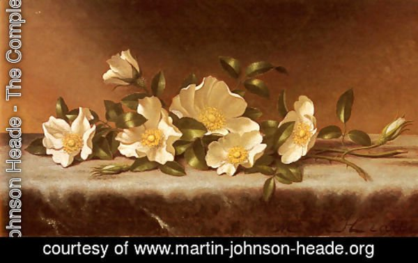 Martin Johnson Heade - Cherokee Roses On A Light Gray Cloth