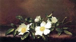 Martin Johnson Heade - Cherokee Roses On A Purple Velvet Cloth