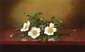 Martin Johnson Heade - Cherokee Roses On A Shiney Table