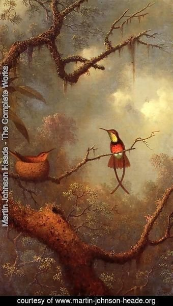 Martin Johnson Heade - Cromson Topaz Hummingbirds Nesting In A Tropical Forest