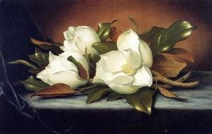 Martin Johnson Heade - Giant Magnolias