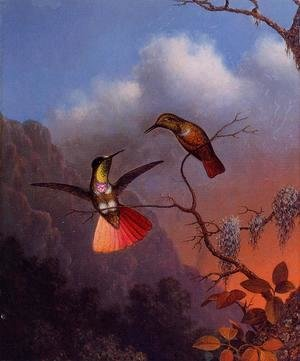 Martin Johnson Heade - Hooded Visorbearer