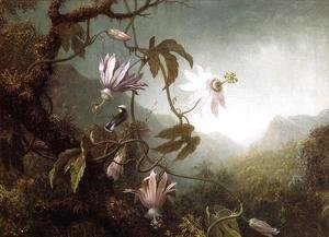 Martin Johnson Heade - Hummingbird Perched Near Passion Flowers