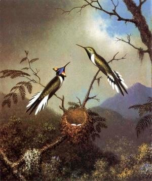 Martin Johnson Heade - Hummingbirds At Their Nest   Sun Gems