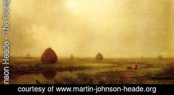 Martin Johnson Heade - Jersey Marshes
