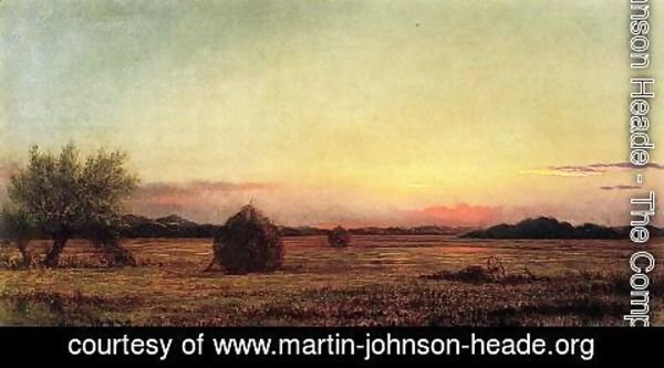 Martin Johnson Heade - Jersey Meadows With Ruins Of A Haycart