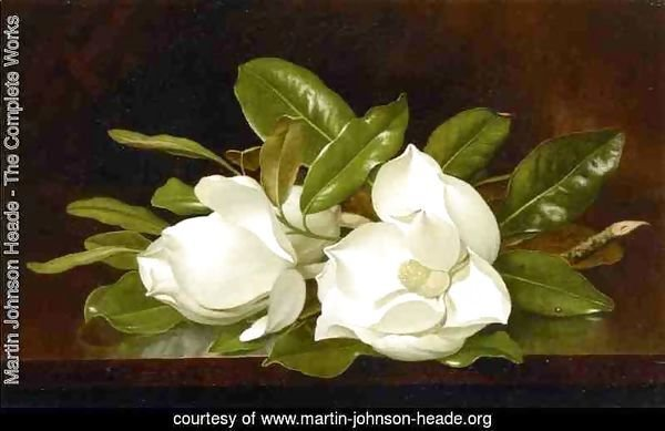 Magnolias On A Wooden Table