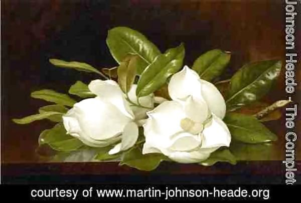 Martin Johnson Heade - Magnolias On A Wooden Table
