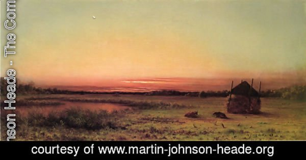 Martin Johnson Heade - Marsh Scene Two Cattle In A Field