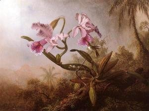 Orchids And Hummingbird2