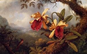 Martin Johnson Heade - Orchids And Hummingbird3