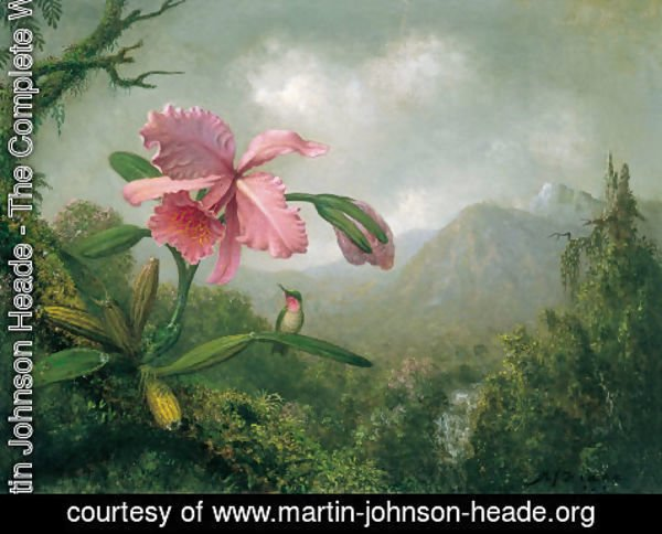 Martin Johnson Heade - Orchids And Hummingbirds4