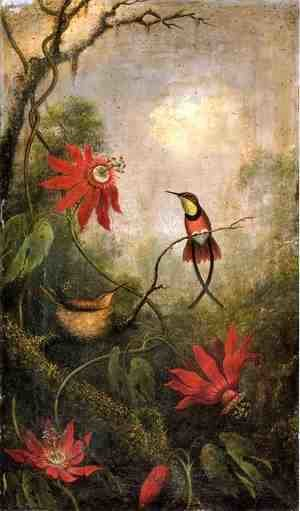 Martin Johnson Heade - Passion Flowers And Hummingbirds2