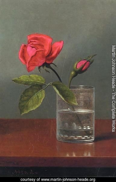 Red Rose And Bud In A Tumbler On A Shiny Table