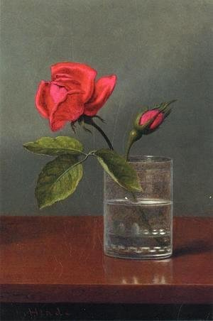 Martin Johnson Heade - Red Rose And Bud In A Tumbler On A Shiny Table