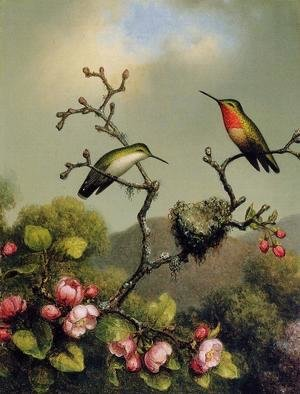 Martin Johnson Heade - Ruby Throat Of North America