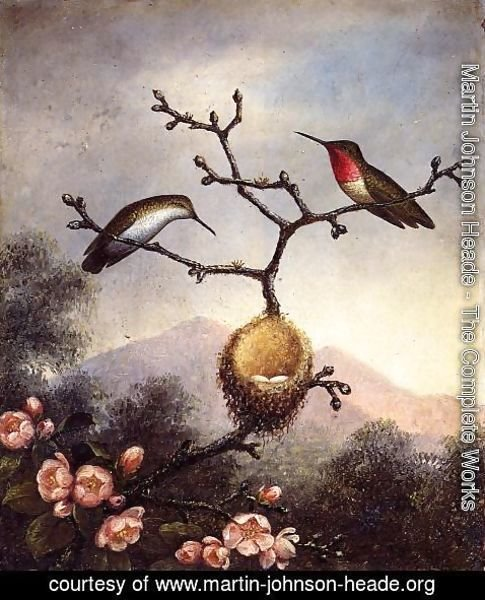 Martin Johnson Heade - Ruby Throats With Apple Blossoms