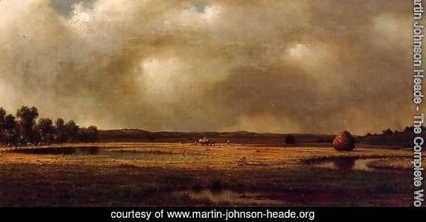Storm Over The Marshes