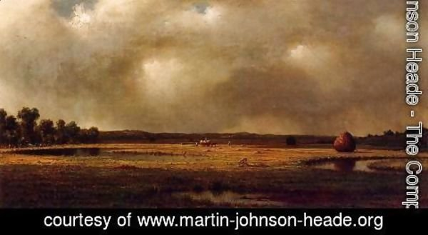 Martin Johnson Heade - Storm Over The Marshes