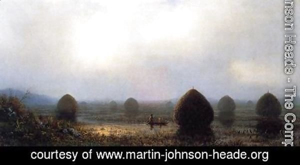 Martin Johnson Heade - The Great Swamp