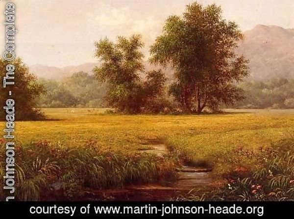 Martin Johnson Heade - The Meadow