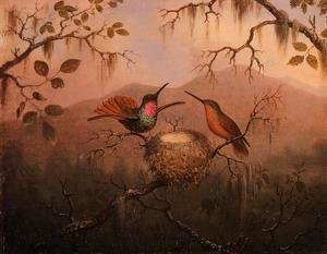 Martin Johnson Heade - Two Hummingbirds At A Nest