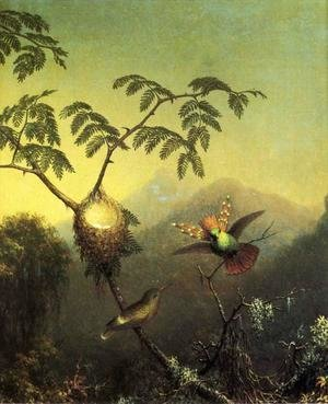 Martin Johnson Heade - Two Hummingbirds Tufted Coquettes