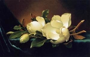 Martin Johnson Heade - Two Magnolias And A Bud On Teal Velvet