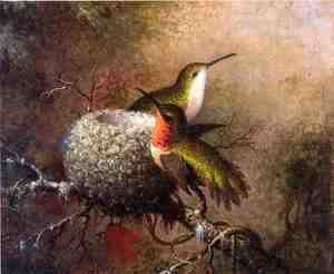 Martin Johnson Heade - Two Ruby Throats By Their Nest